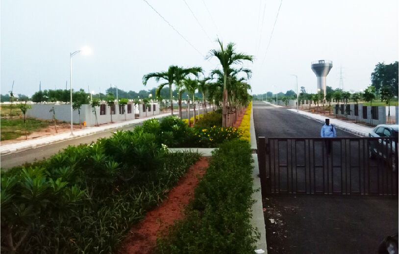 Gated Community Plots in Hyderabad at Sterling Heights