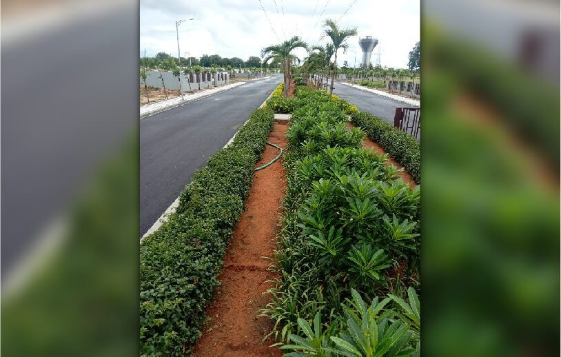 Open Land for Sale in Hyderabad - Sterlings Aster Meadows