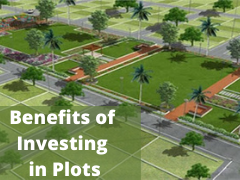 Benefits of Investing in Plots