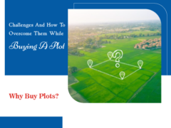 Challenges and how to overcome them while buying a plot